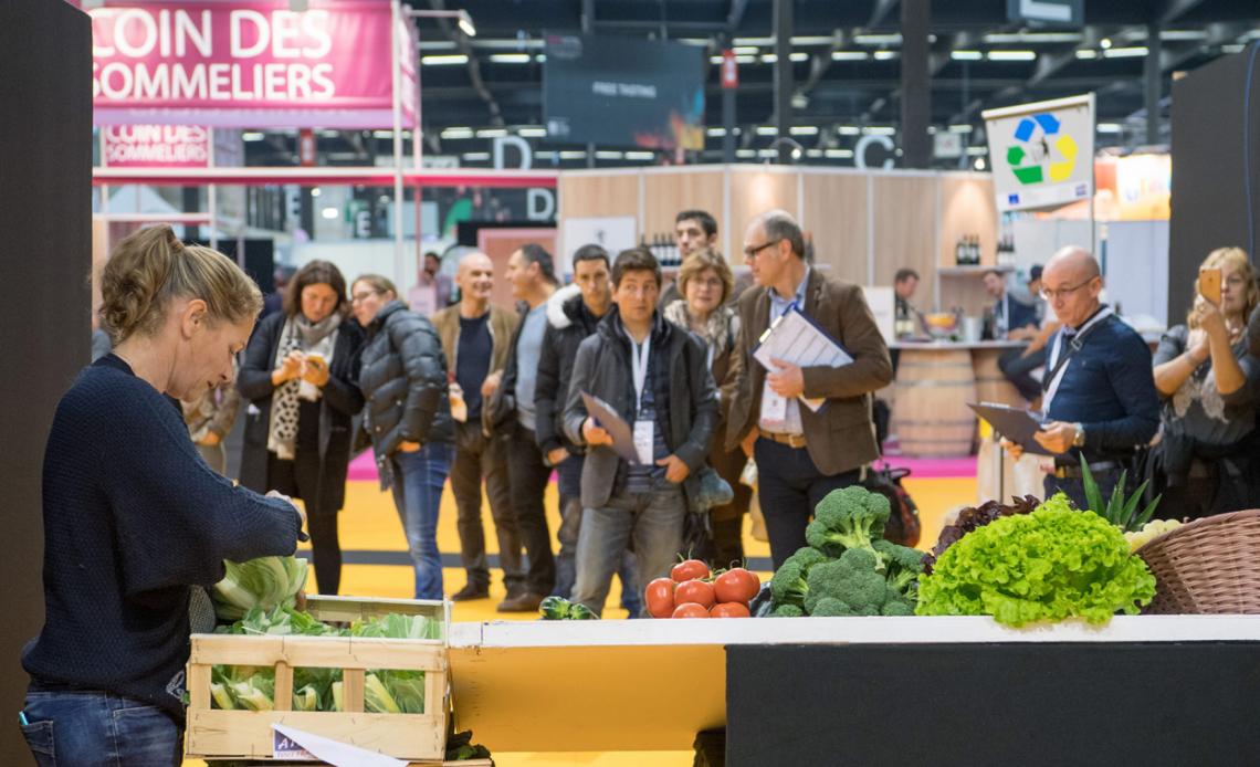 Concours Étal Fruits et Légumes - METRO - 1