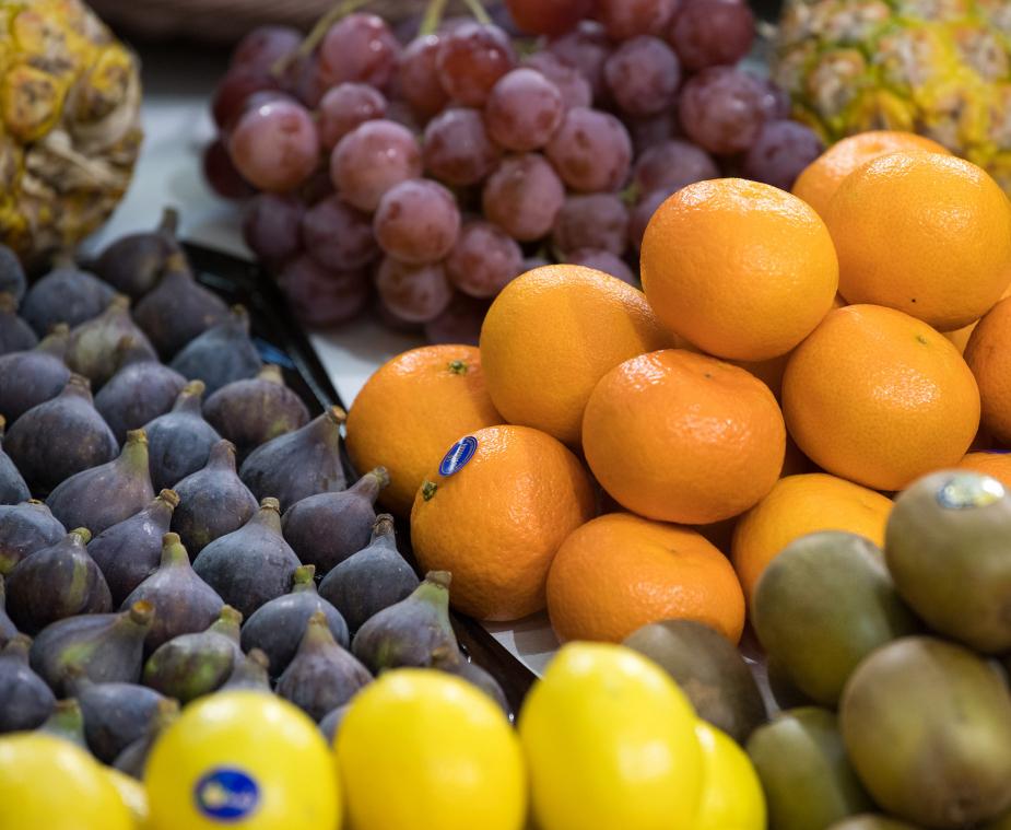 Concours Étal Fruits et Légumes - METRO - 2